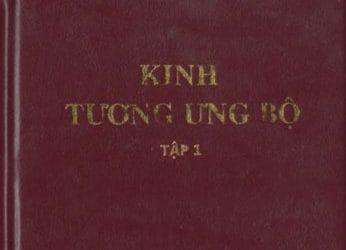 kinh tuong ung bo 1993 1995