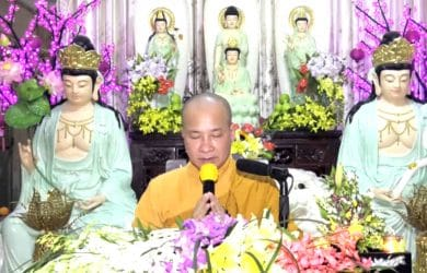 loi dao lam con thich tri hue 2017
