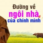 kham pha va lam chu cam xuc thay thich minh niem