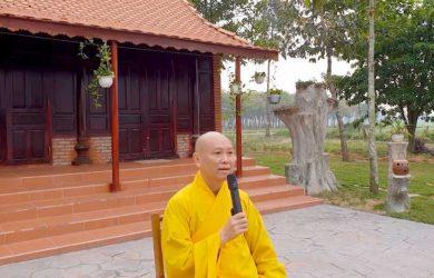 hay bo gai lay vang thuong toa thich chan tinh 2019