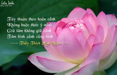 thuong yeu theo phuong phap duc phat day