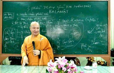 tong phai nao hay nhat 2019 dd thich tri hue